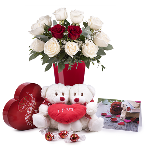ارسال هدیه به آلمان - ارسال گل به آلمان-تبریک- ولنتاین- سبد شکلات- پکیج شکلات -رز -رزهای رنگی-ماکارون- خرس پکیج ولنتاین- تبریک تولد-