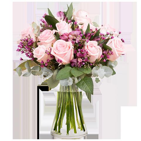 ارسال هدیه به ایتالیا - ارسال گل به ایتالیا-تبریک- ولنتاین- ارکیده- گیاه آپارتمانی - گل و گیاه- ارکیده صورتی- گلدان گل - رز صورتی - دسته گل رز