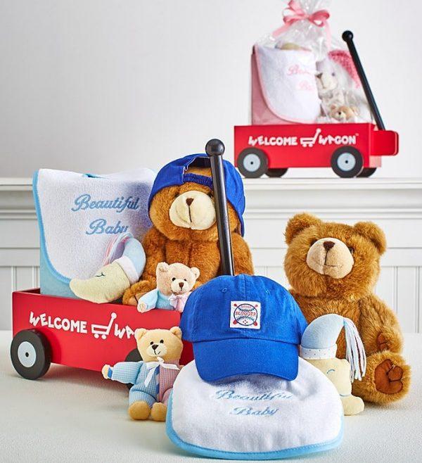 ارسال هدیه به آمریکا - ارسال گل به آمریکا-تبریک نوزاد- تبریک تولد - ست نوزاد- سیسمونی- هدیه تولد نوزاد