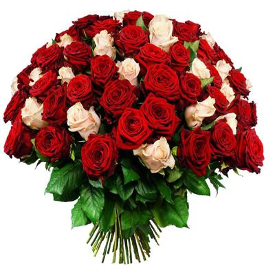 رز سفید و قرمز-ارسال هدیه به کانادا