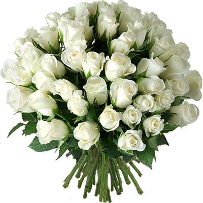 رز سفید-ارسال هدیه به اسپانیا