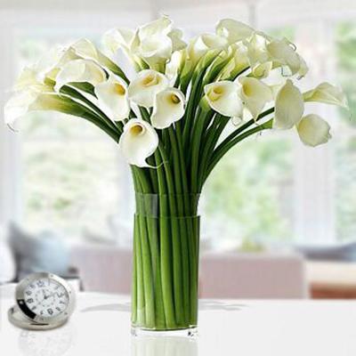 گلدان لیلیوم -ارسال هدیه به امارات