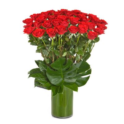 گلدان رز قرمز ۳۶ شاخه-ارسال هدیه به استرالیا