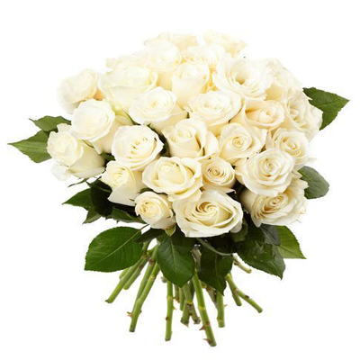 رز سفید -ارسال هدیه به کانادا