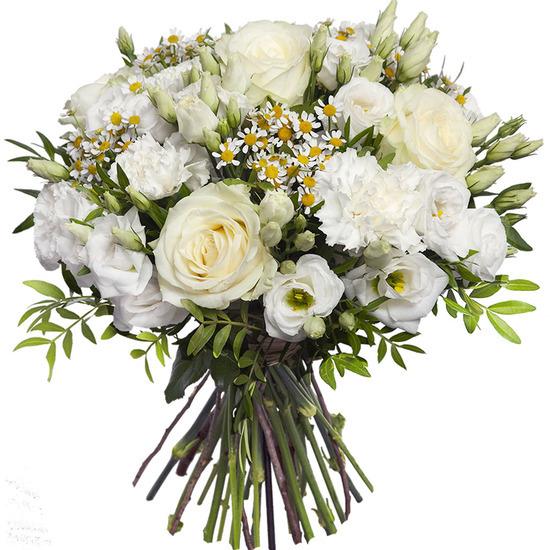 ارسال هدیه به انگلستان - ارسال گل به انگلیس-تبریک تولد- روز پدر-روز مادر -گیاه آپارتمانی -دسته گل سفید