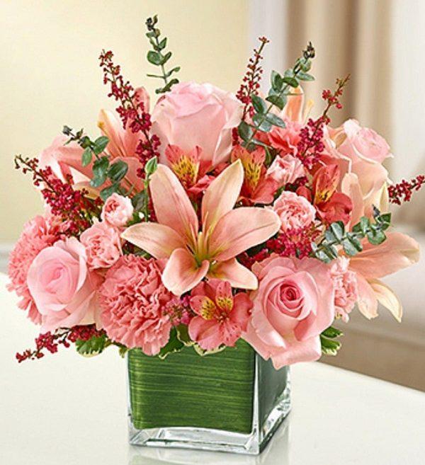 ارسال هدیه به ایتالیا - ارسال گل به ایتالیا-تبریک- ولنتاین- ارکیده- گیاه آپارتمانی - گل و گیاه- ارکیده صورتی- گلدان گل - آلسترومریا - لیلیوم