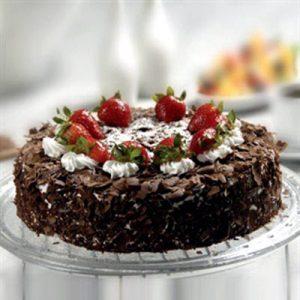 کیک شکلاتی-ارسال هدیه به اتریش