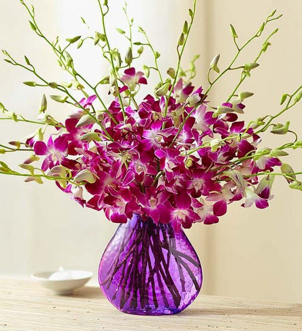 گلدان ارکیده - ارسال گل به امریکا- ارسال هدیه به امریکا