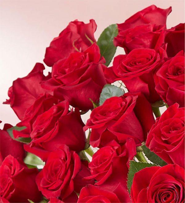 ارسال گل به امریکا -دسته گل عاشقانه